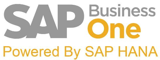 Take Your Business to the Next Level of Performance with SAP HANA®
