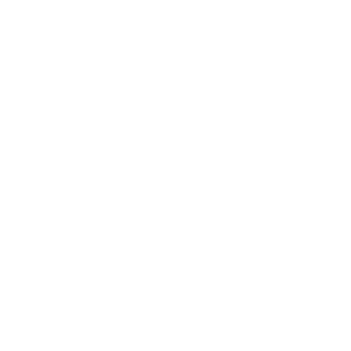 Premiere Projects